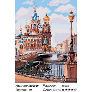 Количество цветов и сложность Каналы Санкт-Петербурга Раскраска по номерам на холсте Живопись по номерам RUS039