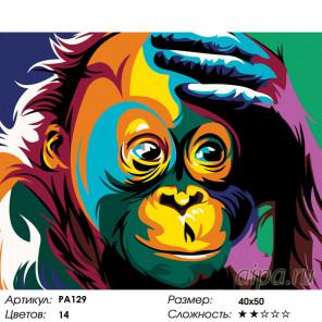 Количество цветов и сложность Удивление радужной обезьяны Раскраска по номерам на холсте Живопись по номерам PA129