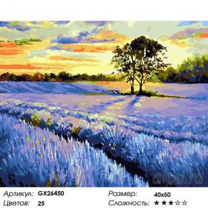 Количество цветов и сложность Лаванда на закате Раскраска картина по номерам на холсте GX26450