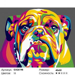 Количество цветов и сложность Радужный бульдог Раскраска картина по номерам на холсте GX26198