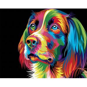 Радужный сеттер Раскраска картина по номерам на холсте GX26672