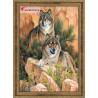 В рамке Пара волков Алмазная вышивка мозаика АЖ-1052