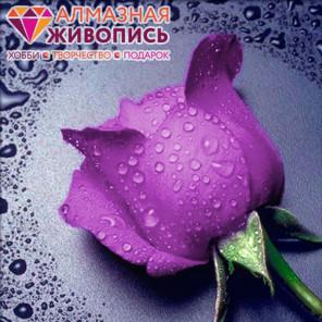 Сиреневая роза Алмазная вышивка мозаика АЖ-0016