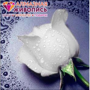 Белая роза Алмазная вышивка мозаика АЖ-0024