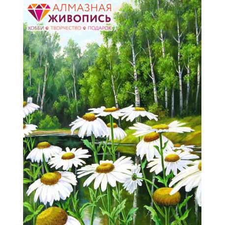 Ромашки у пруда Алмазная вышивка мозаика АЖ-1239