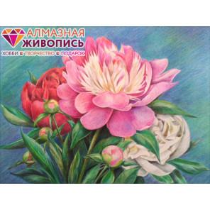 Букет пионов Алмазная вышивка мозаика АЖ-1313