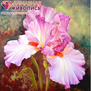 Розовый ирис Алмазная вышивка мозаика АЖ-1125