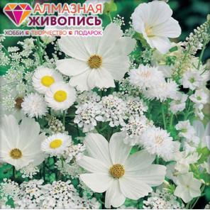 Белые полевые цветы Алмазная вышивка мозаика АЖ-1195