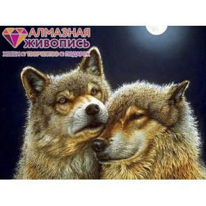 Волк и волчица Алмазная вышивка мозаика АЖ-1200