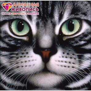 Мордочка кота Алмазная вышивка мозаика АЖ-1085