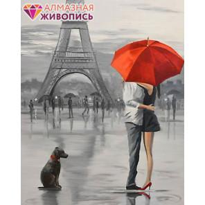 Парижская романтика Алмазная вышивка мозаика АЖ-1409