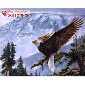 В рамке Орел Алмазная вышивка мозаика АЖ-1411