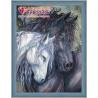 В рамке Пара лошадей Алмазная вышивка мозаика АЖ-1386