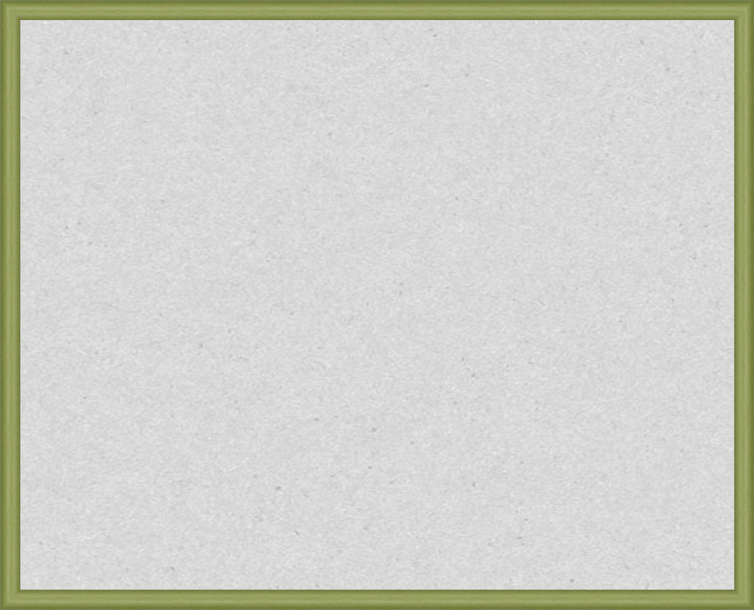 Внешний вид светло-зеленой рамки N155